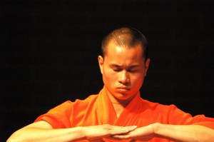 Tai Chi demonstratie : workshop 2