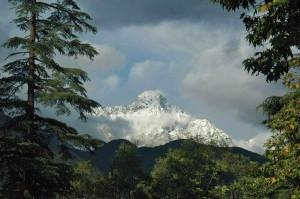Little Tibet IPA reis - Himalaya site