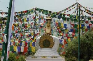 Little Tibet IPA reis - Dharamsala stupa met vlaggen